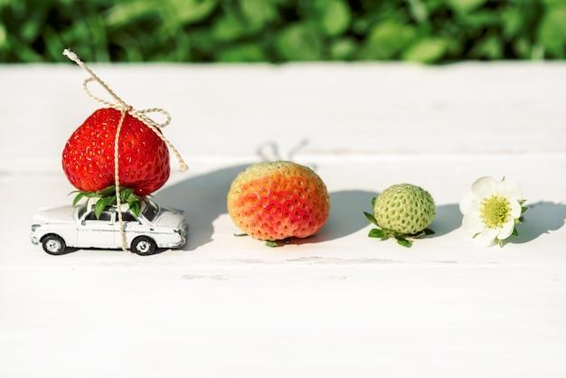 Sur un fond blanc, une petite voiture jouet avec des fraises rouges place l'inscription.