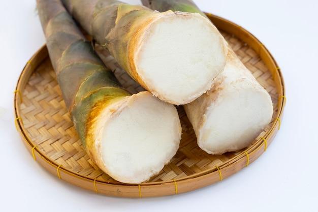 Fond blanc de pousses de bambou frais.