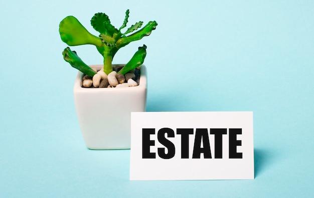 Sur fond bleu clair - une plante en pot et une carte blanche avec l'inscription estate
