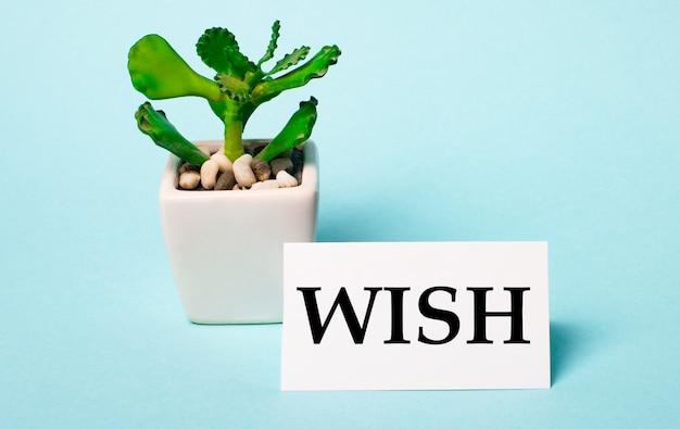 Sur fond bleu clair - une plante en pot et une carte blanche avec l'inscription wish