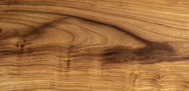 Fond de bois de cercis siliquastrum