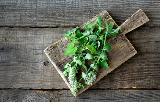 Fond bois menthe verte