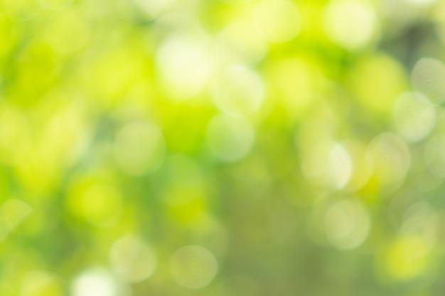 Fond de bokeh avec lumière naturelle, vert, jaune avec flou