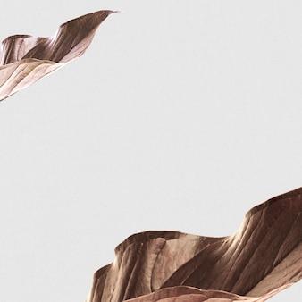 Fond botanique de cadre de feuilles séchées
