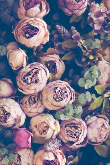 Fond botanique avec des fleurs de pivoines roses