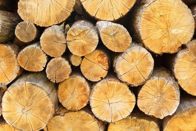 Fond de bûches de bois de chauffage coupées à sec, empilées les unes sur les autres en un tas