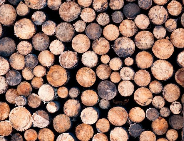 Fond de bûches de bois