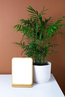Fond de cadre en bois et plante verte sur table blanche avec fond de mur orange foncé