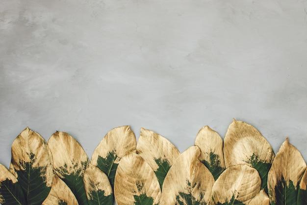 Fond de cadre de feuilles peintes or et vert