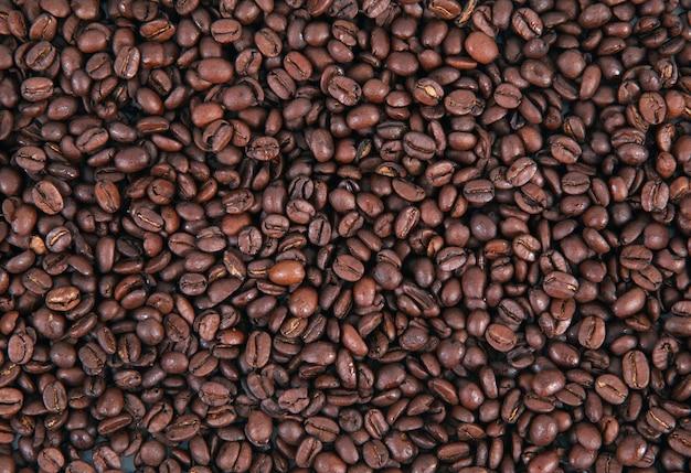 Fond de café en grains