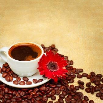Fond de café avec tasse, haricots et fleur rouge
