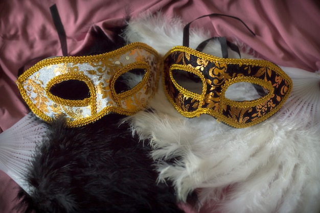 Fond de carnaval élégant avec des masques et des plumes amusantes