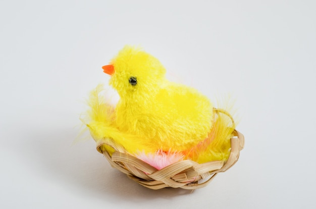 Fond de carte de pâques. poulet jouet dans un nid avec des plumes sur un fond blanc avec espace de copie.