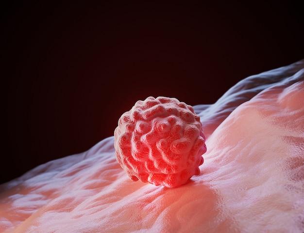 Fond de cellule humaine
