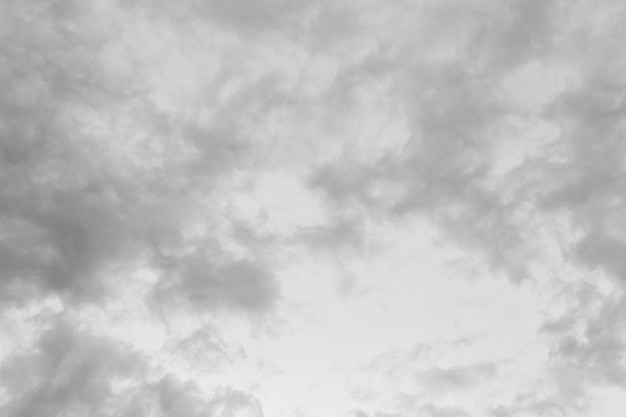 Fond de ciel blanc, la mer dans la tempête, la pluie arrive et la vue sur la mer.