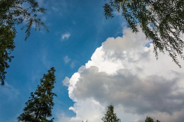 Fond de ciel-nuages.