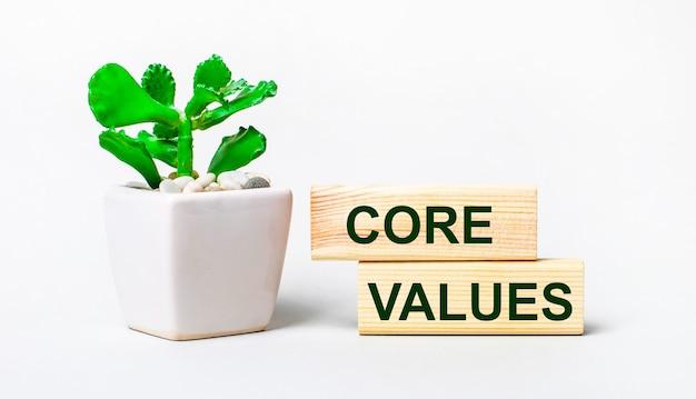 Sur un fond clair, une plante dans un pot et deux blocs de bois avec le texte valeurs fondamentales