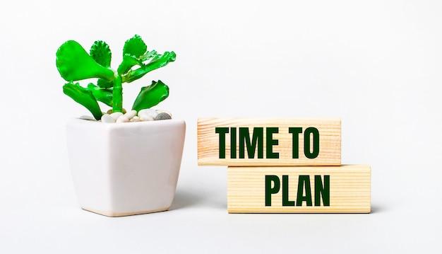 Sur fond clair, une plante en pot et deux blocs de bois avec le texte time to plan