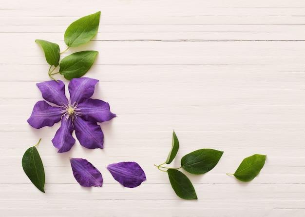 Fond avec clématite violette