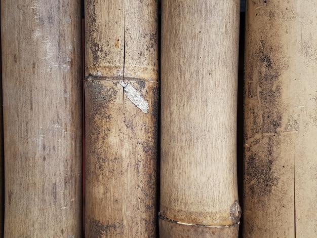 Fond de clôture de bambou