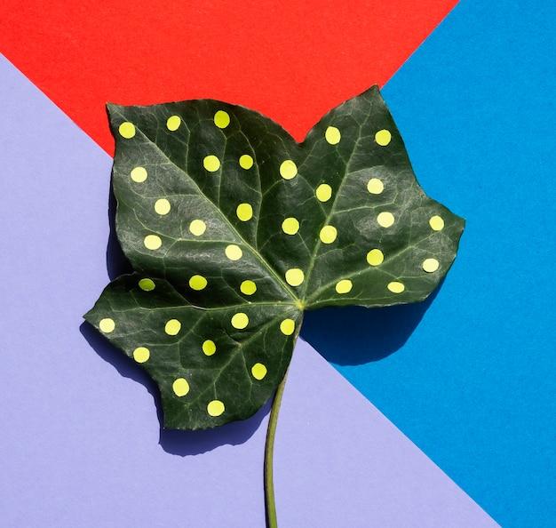 Fond coloré avec une feuille verte peinte