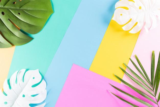 Fond coloré tropical d'été avec des feuilles de palmier et de monstera