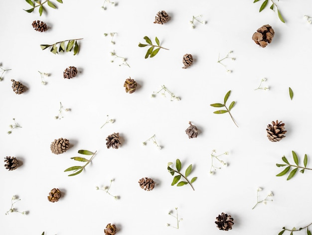 Fond de composition plat créatif naturel de cônes, de feuilles vertes sèches et de fleurs blanches