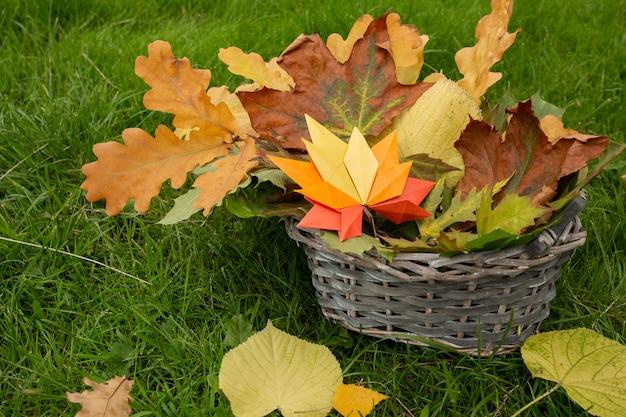 Fond de concept d'automne artisanat en papier traditionnel origami à la main feuilles d'érable tombées sur la nature du champ image de fond coloré parfait pour un usage saisonnier