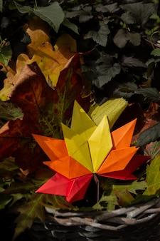 Fond de concept d'automne artisanat en papier traditionnel origami à la main feuilles d'érable tombées nature fond coloré image close up