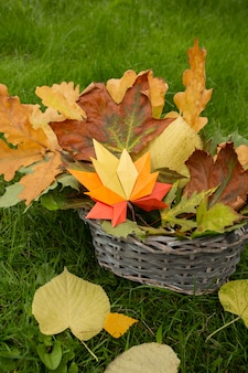Fond de concept d'automne artisanat en papier traditionnel origami à la main feuilles d'érable tombées nature image de fond coloré parfait pour une utilisation saisonnière herbe verte