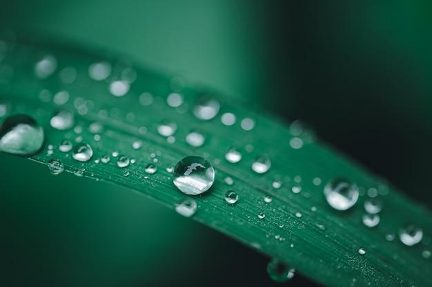 Fond de concept de goutte d'eau amour environnemental