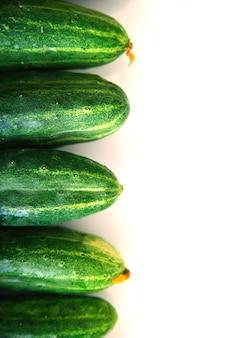 Fond de concombres frais verts. les concombres se trouvent exactement dans une rangée sur un fond blanc. texture naturelle. industrie agricole. récolte.