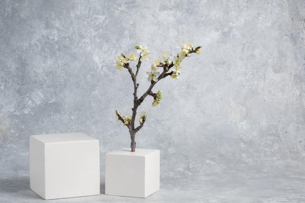 Fond cosmétique avec des formes géométriques deux cubes et une branche fleurie d'une cerise sur un fond abstrait gris pour démontrer la vitrine des produits cosmétiques et l'espace de copie