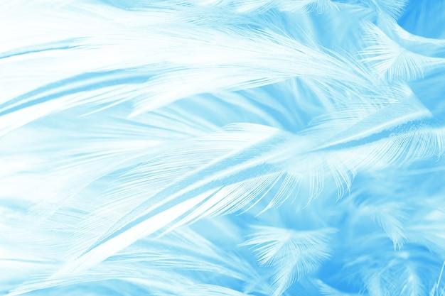 Fond De Couleur Bleu Plume Photo Premium