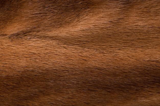 Fond de couleur marron vison laine naturelle