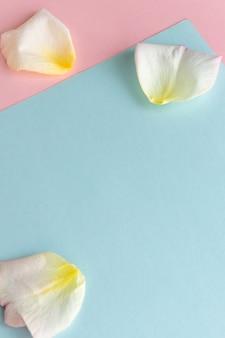 Fond de couleurs pastel fraîches avec création de pétales de rose espace de concept créatif pour le texte