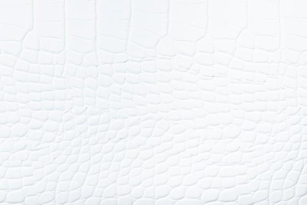 Fond en cuir blanc