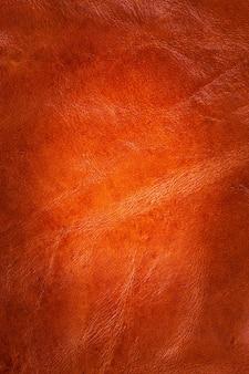 Fond en cuir marron.
