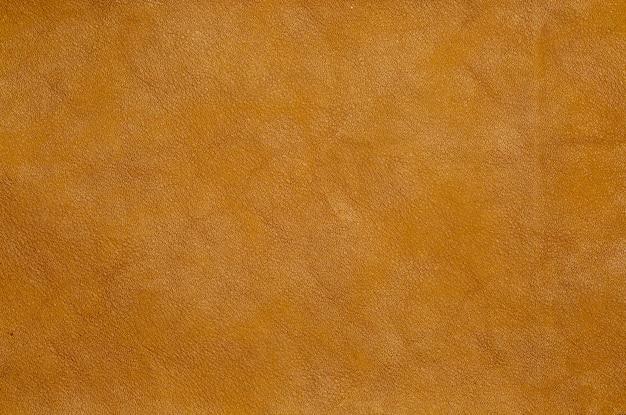 Fond de cuir de peau