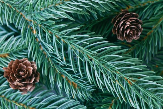Fond de décoration de noël avec des feuilles de pin, des pommes de pin en vue de dessus à plat avec espace de copie pour le texte de remplissage. fond d'écran d'arbre de noël pour carte ou autre design dans le concept de noël.