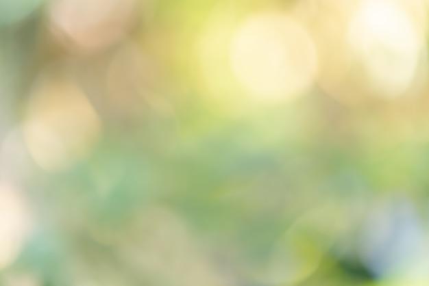 Fond défocalisé bokeh floue jaune vert coloré