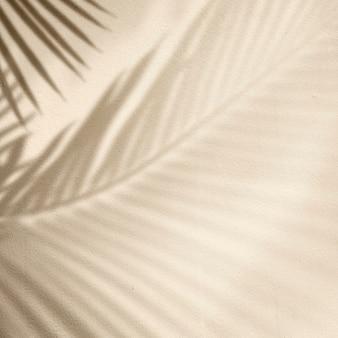Fond doré avec palmier