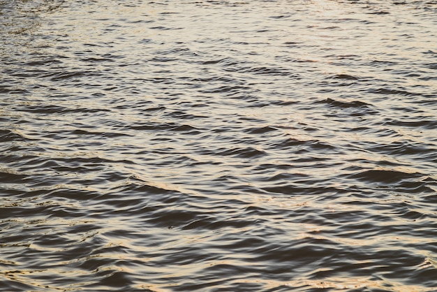 Fond d'eau de mer