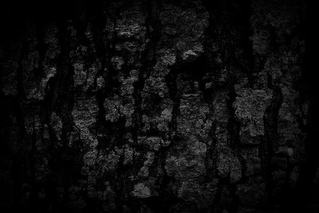 Fond d'écorce noire naturellement belle texture d'écorce ancienne