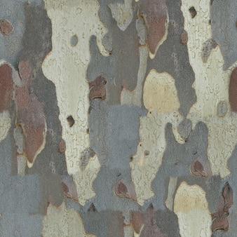 Fond d'écorce de texture transparente