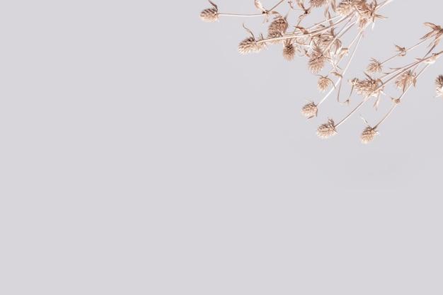 Fond d'écran floral ton terre