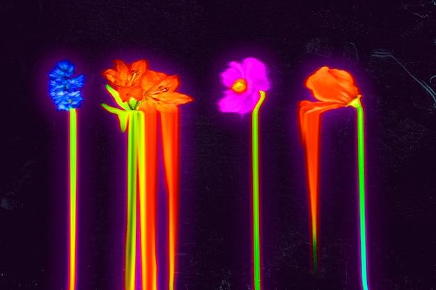 Fond d'écran holographique de fleurs liquides