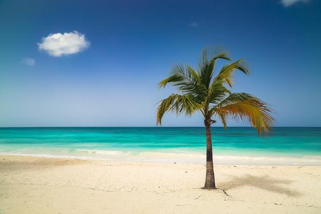 Fond d'écran de vacances vacances d'été