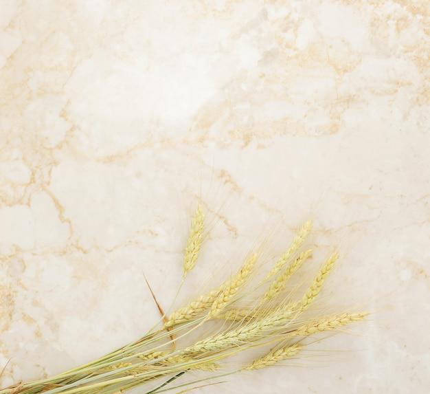 Fond d'épis de blé sur marbre