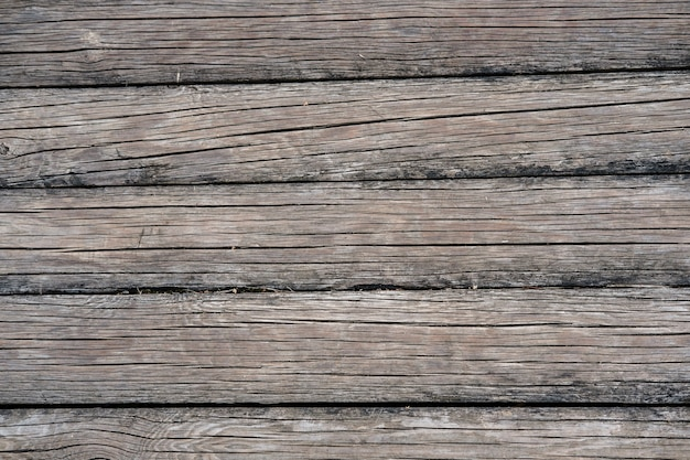 Le fond est fait de vieilles bûches de bois minces d'une teinte grisâtre, avec beaucoup de fissures longitudinales.